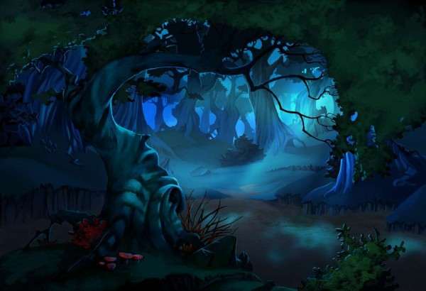 The forest at night