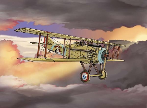 Volar en solitario